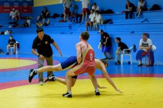 Фестиваль спортивной борьбы 41 армии - 2017, Новосибирск_1