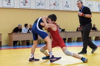 Кубок Новосибирской области по греко-римской борьбе среди юношей 2016